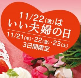 131119iifufunohi01.jpg